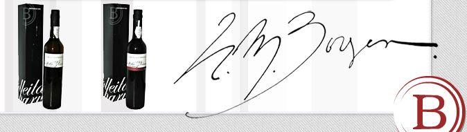 HM Borges stylish modern logo