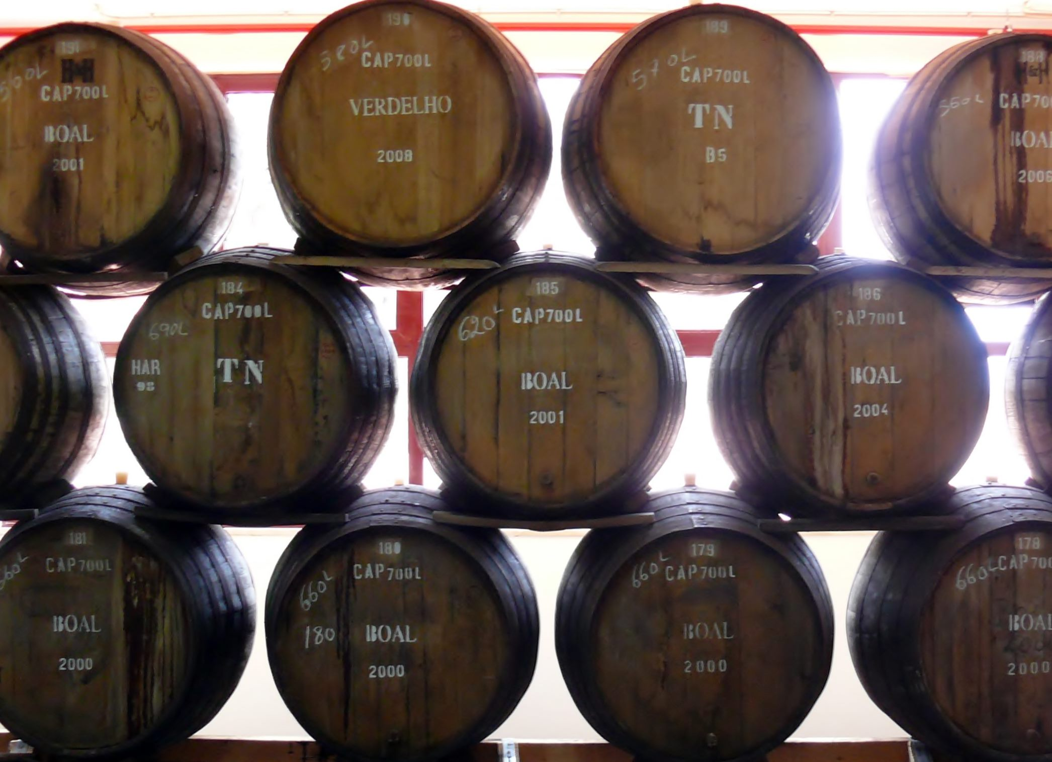 Boal, Verdelho and Tinta Negra all aging canteiro style