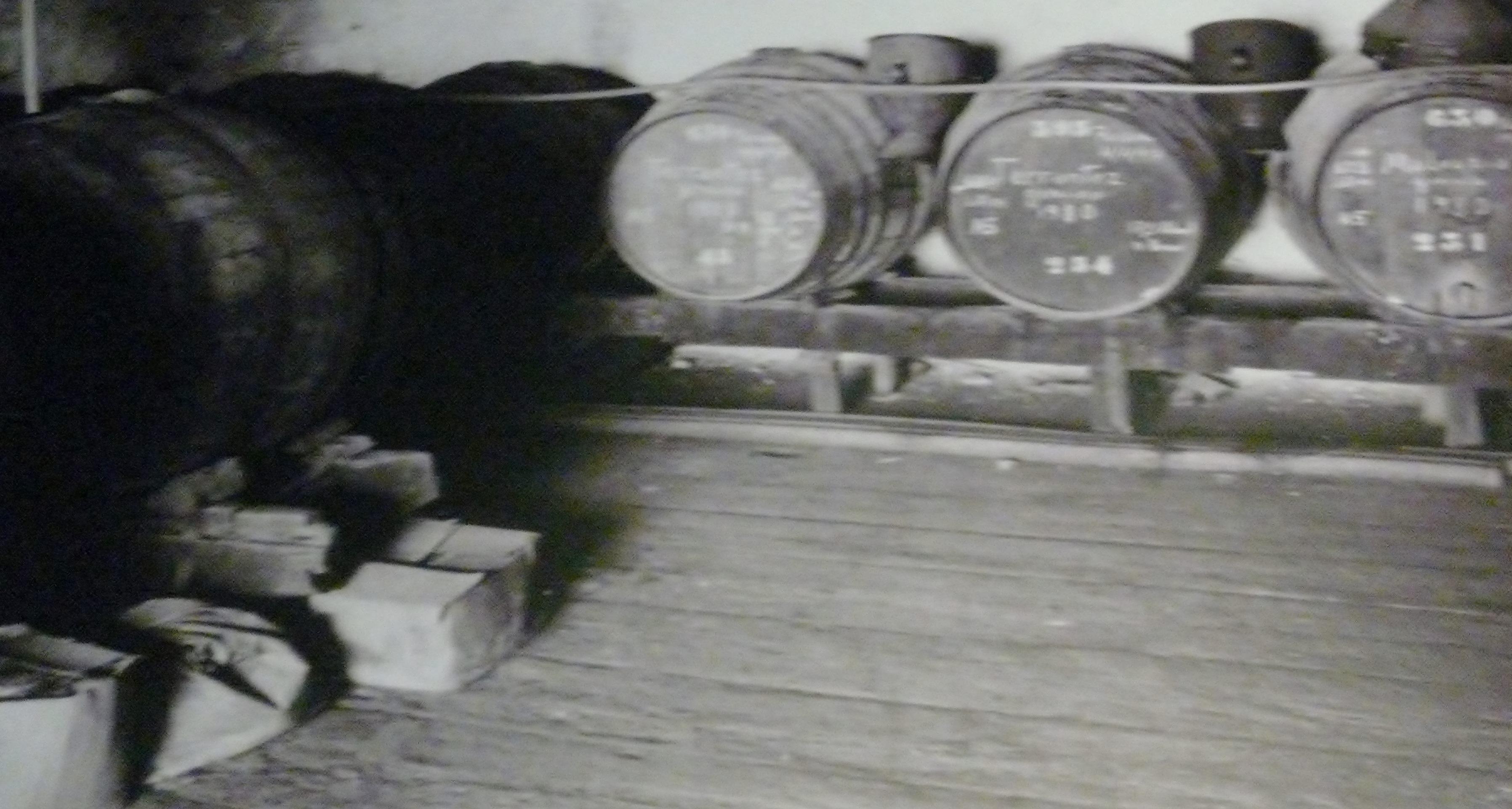Old barrels of Madeira wine