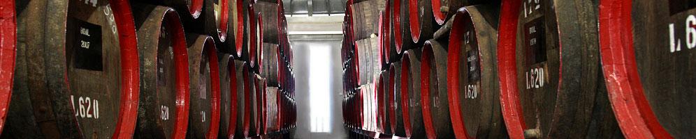 Barbeito barrels aging