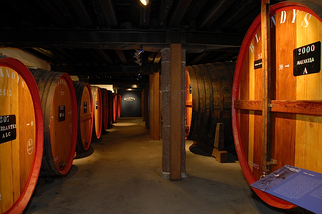 "Large ""Lions"" of Madeira wine slumber"