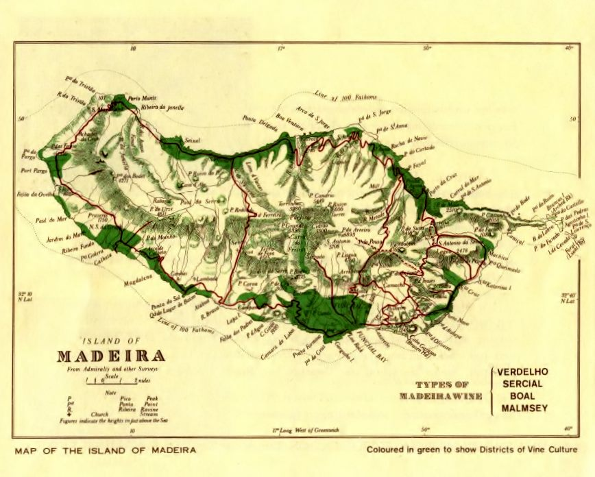 Wine growing regions in Madeira