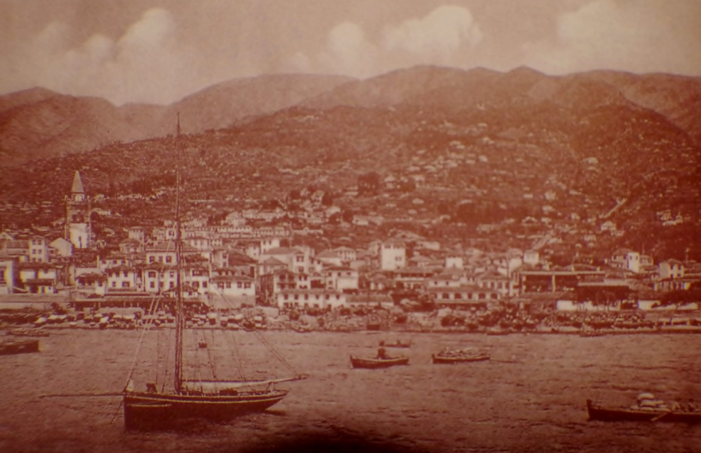 Old Funchal picture