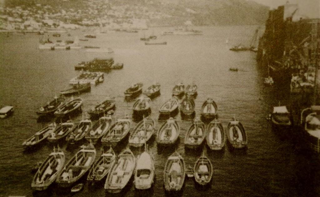Fishing boats at Funchal