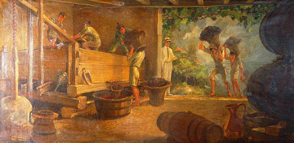 Madeira wine harvest in years gone by