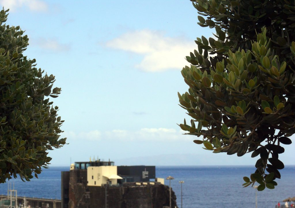 Design Centre, the Breakwater, Funchal Madeira
